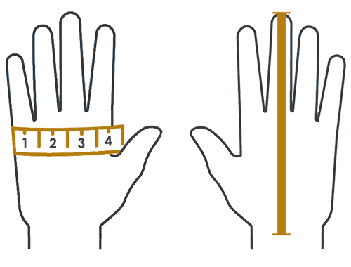 Measuring-hands-For-Glove-Sizing